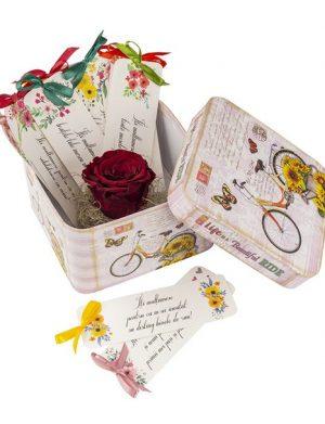 12 Motive Semne Carte Cu Trandafir Criogenat