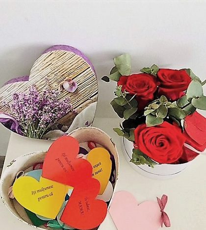 12 motive te iubesc inima 1 2