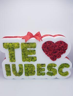 Aranjament Te Iubesc, cu licheni naturali si trandafiri sapun, 47x10cm, ARBC1103