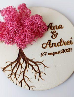 """Marturie nunta/botez """"COPACUL VIETII"""", Ciclam, cu licheni stabilizati, diam. 10 cm, AMB174"""