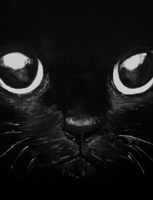 """Tricou """"Cat Eye"""", AHGL13004"""