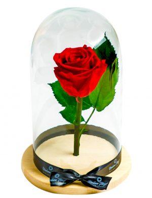 Aranjament cu 1 trandafir criogenat si licheni stabilizati, in bol de sticla de forma unui bec MFB151
