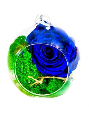 Aranjament trandafiri criogenati MF254
