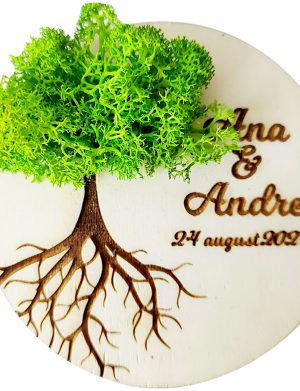 Marturie nunta/botez COPACUL VIETII, Verde Neon, cu licheni stabilizati, diam. 10 cm, AMB172