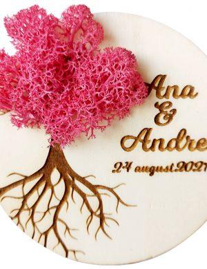 Marturie nunta/botez COPACUL VIETII, Ciclam, cu licheni stabilizati, diam. 10 cm, AMB174