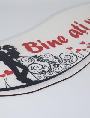 """Pancarta nunta, """"Bine ati venit"""" – ILIF1820"""