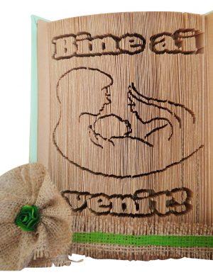 Carte sculptata cu mesajul Bine ai venit!, OMIS1617