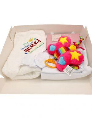Set cadou bebelusi I am in charge Fluturas, 6 piese, ambalat in cutie de cadou cu fereastra de vizitare – ILIF005