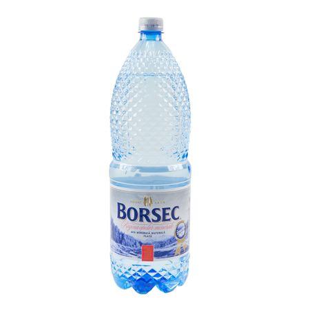 borsec plata 2 l