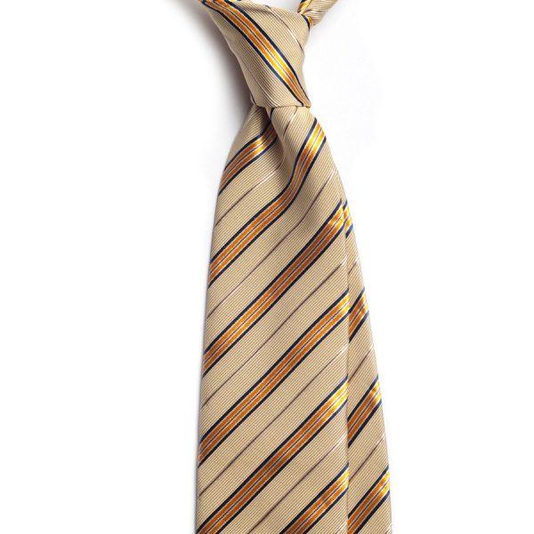 cravata matase model dungi c317 5961 4