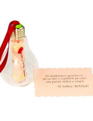 Mesaj-Sul, cartonul inchis intr-un bec, cu posibilitate de a fi agatat, personalizat, multicolor