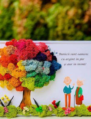 Tablou cadou cu licheni si flori uscate pentru Bunici 21×30 cm, YODB1621