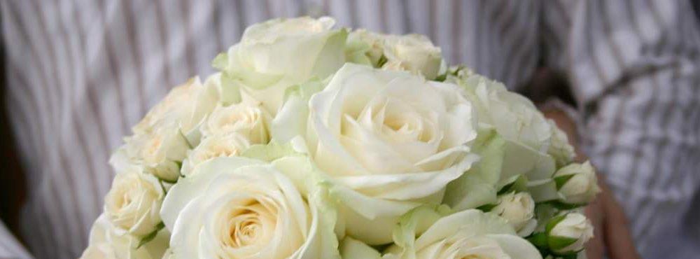 Floraria Vitan Giurgiu